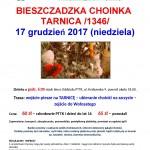 Bieszczadzka choinka -Tarnica 17.12.2017