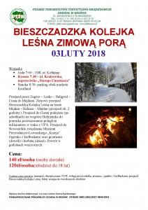 Bieszczadzka Kolejka Leśną Zimową Porą 03.02.2018