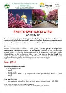 Święto kwitnącej wiśni kwiecień 2019